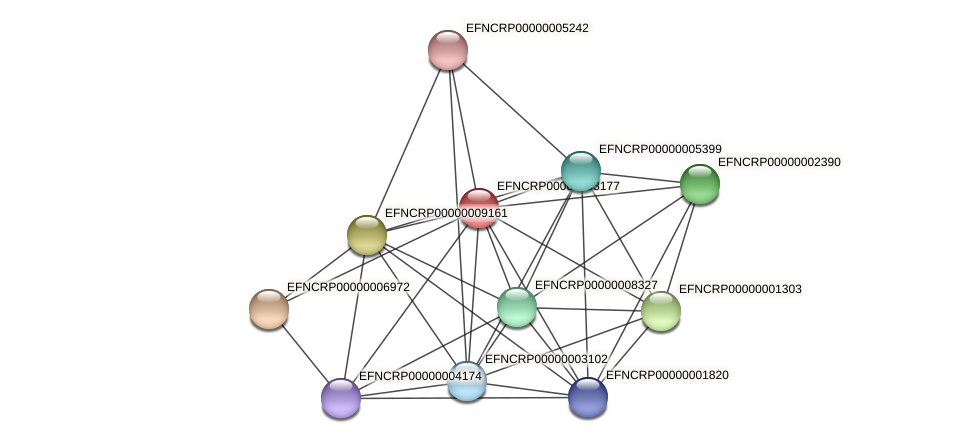EFNCRP00000003177 protein (Neurospora crassa) - STRING interaction network