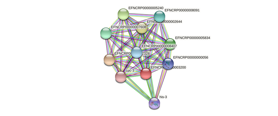 EFNCRP00000003200 protein (Neurospora crassa) - STRING interaction network