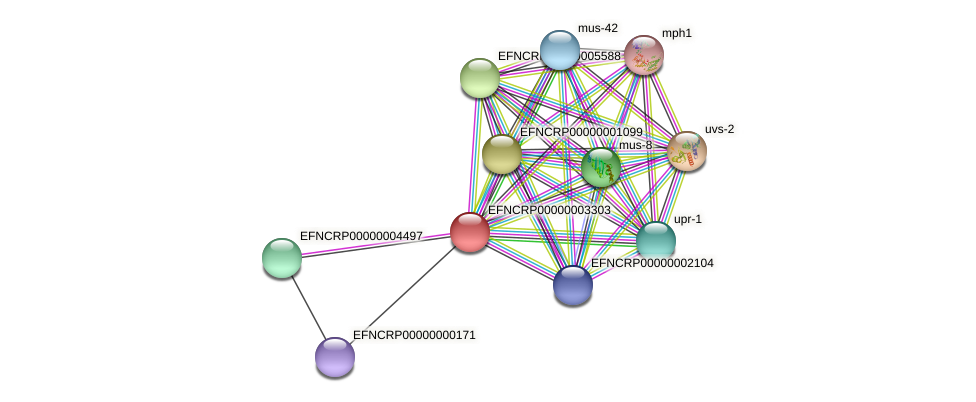 EFNCRP00000003303 protein (Neurospora crassa) - STRING interaction network