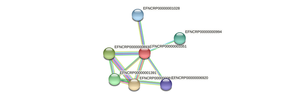 EFNCRP00000003351 protein (Neurospora crassa) - STRING interaction network
