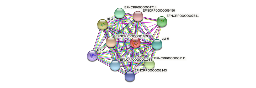 EFNCRP00000003385 protein (Neurospora crassa) - STRING interaction network