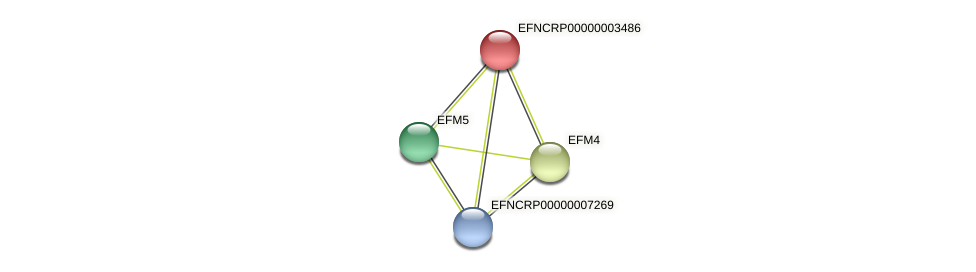 17E5.330 protein (Neurospora crassa) - STRING interaction network
