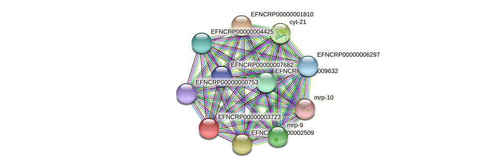 EFNCRP00000003723 protein (Neurospora crassa) - STRING interaction network