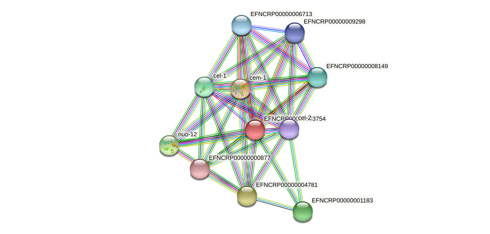 49D12.090 protein (Neurospora crassa) - STRING interaction network
