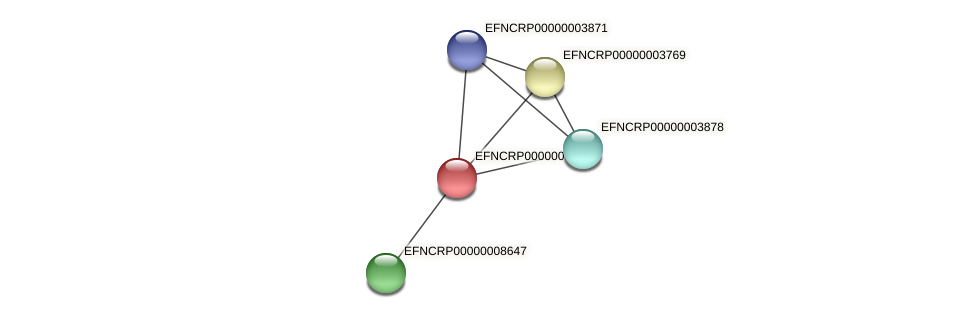 EFNCRP00000003827 protein (Neurospora crassa) - STRING interaction network