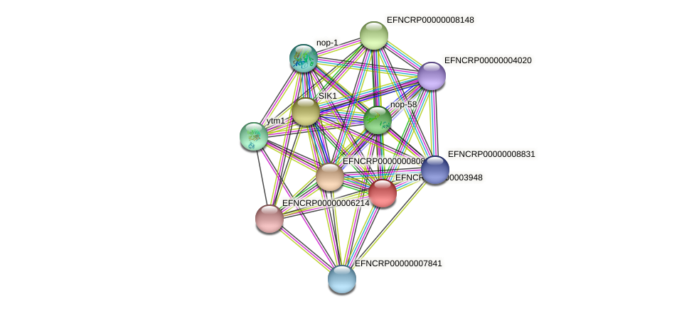 EFNCRP00000003948 protein (Neurospora crassa) - STRING interaction network