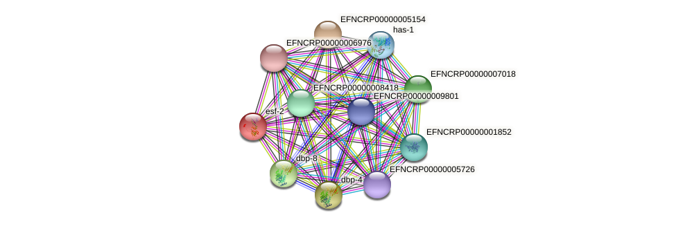 EFNCRP00000004040 protein (Neurospora crassa) - STRING interaction network