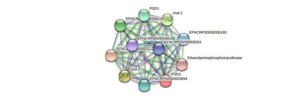 psd-2 protein (Neurospora crassa) - STRING interaction network