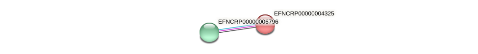 EFNCRP00000004325 protein (Neurospora crassa) - STRING interaction network