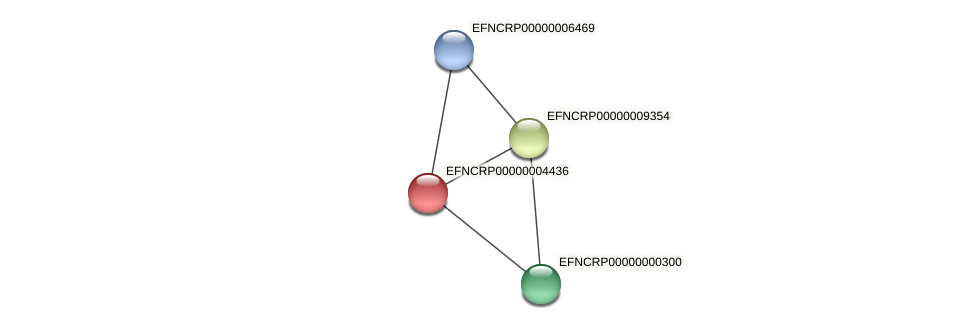 EFNCRP00000004436 protein (Neurospora crassa) - STRING interaction network