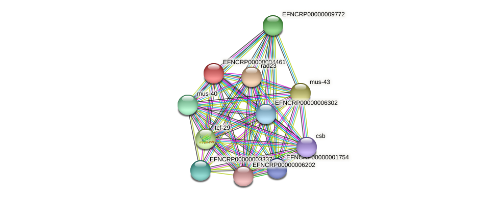 EFNCRP00000004461 protein (Neurospora crassa) - STRING interaction network