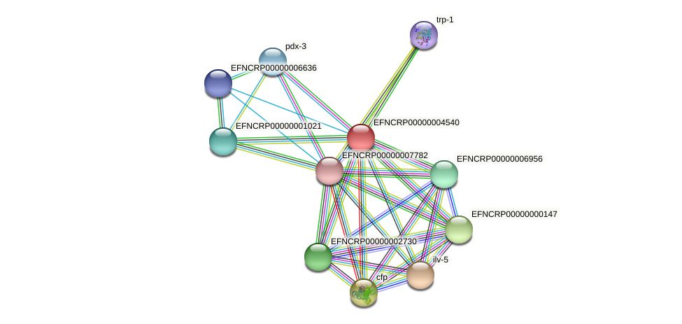 EFNCRP00000004540 protein (Neurospora crassa) - STRING interaction network