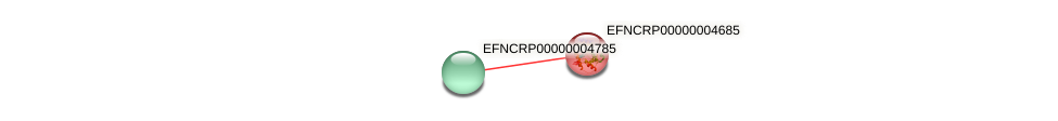 EFNCRP00000004685 protein (Neurospora crassa) - STRING interaction network