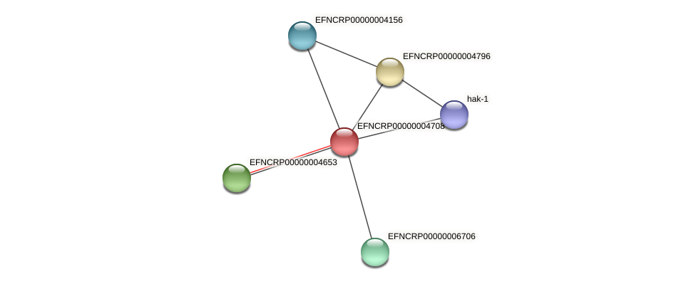 EFNCRP00000004708 protein (Neurospora crassa) - STRING interaction network