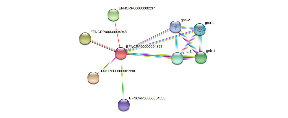 EFNCRP00000004827 protein (Neurospora crassa) - STRING interaction network