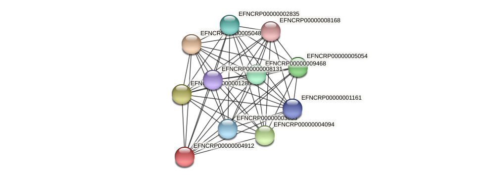 EFNCRP00000004912 protein (Neurospora crassa) - STRING interaction network