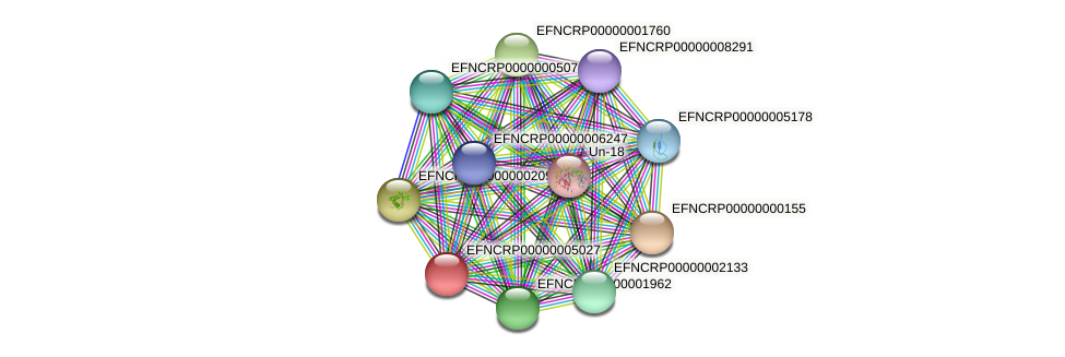 EFNCRP00000005027 protein (Neurospora crassa) - STRING interaction network