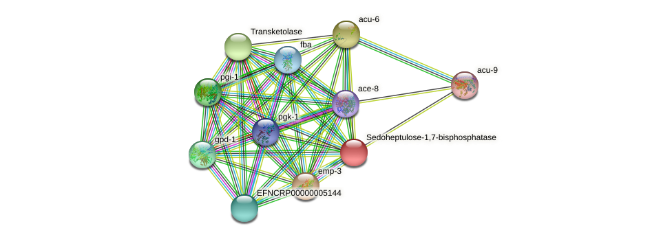 EFNCRP00000005111 protein (Neurospora crassa) - STRING interaction network