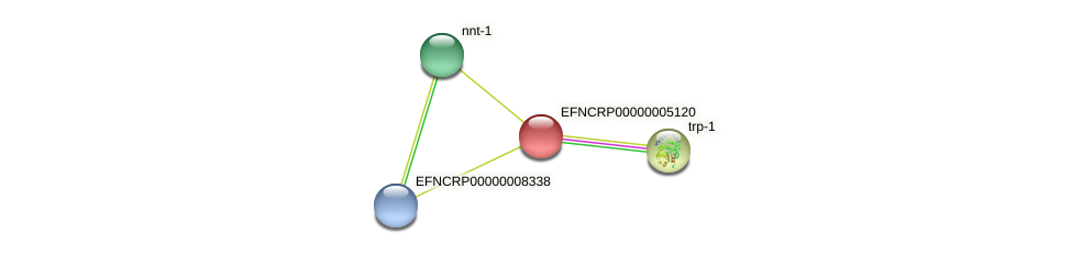 EFNCRP00000005120 protein (Neurospora crassa) - STRING interaction network
