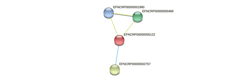 EFNCRP00000005122 protein (Neurospora crassa) - STRING interaction network