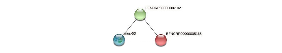 EFNCRP00000005168 protein (Neurospora crassa) - STRING interaction network