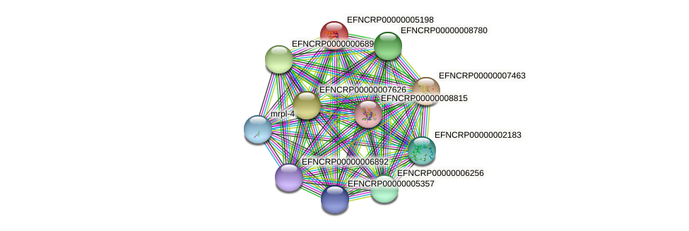 EFNCRP00000005198 protein (Neurospora crassa) - STRING interaction network