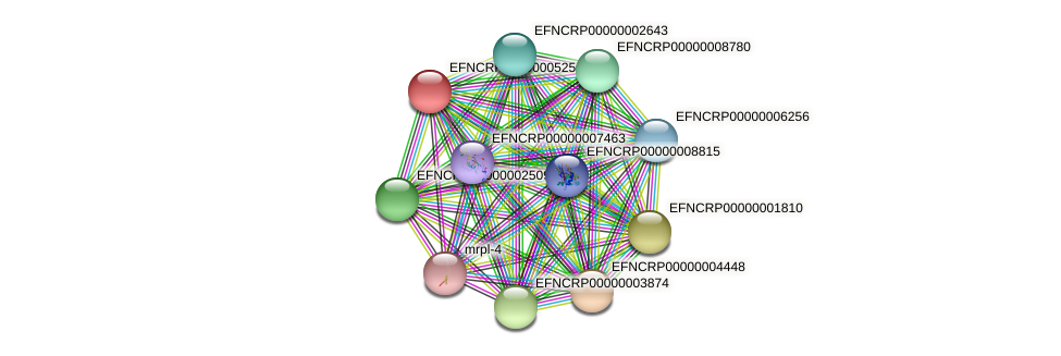 29E8.010 protein (Neurospora crassa) - STRING interaction network