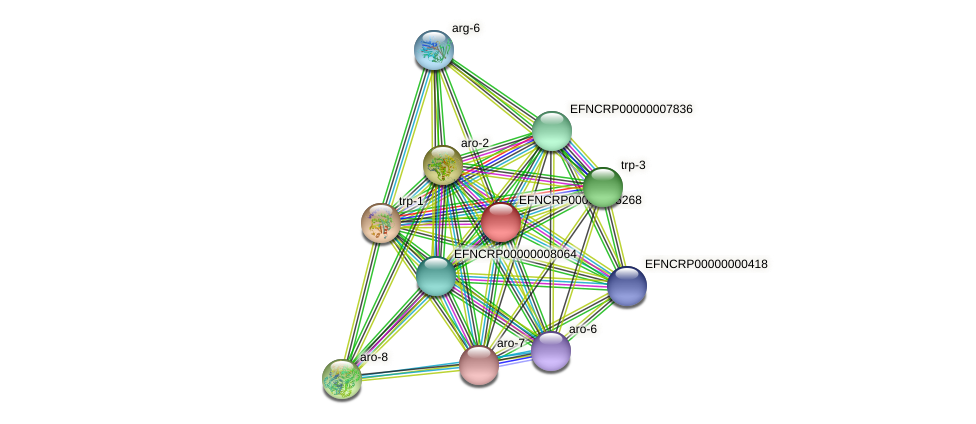 EFNCRP00000005268 protein (Neurospora crassa) - STRING interaction network