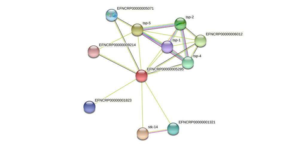 EFNCRP00000005295 protein (Neurospora crassa) - STRING interaction network