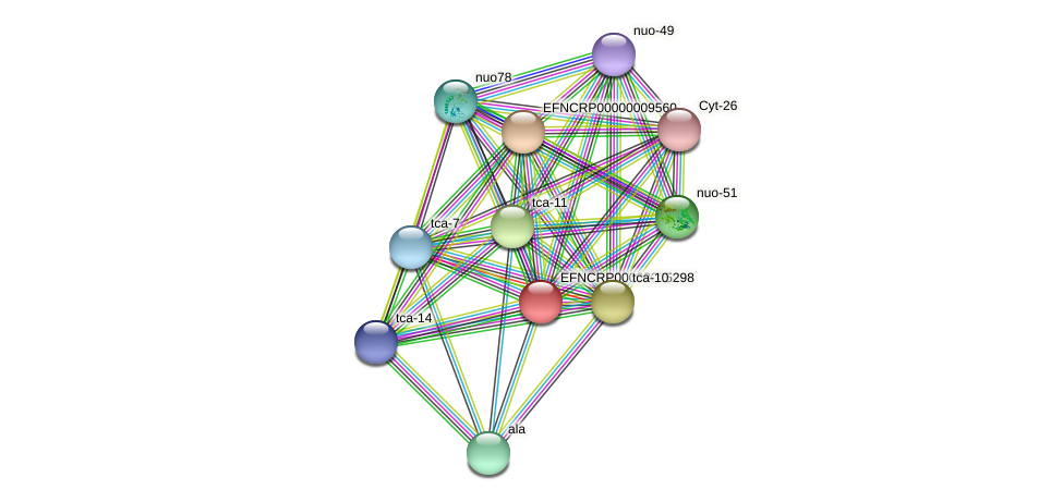 EFNCRP00000005298 protein (Neurospora crassa) - STRING interaction network