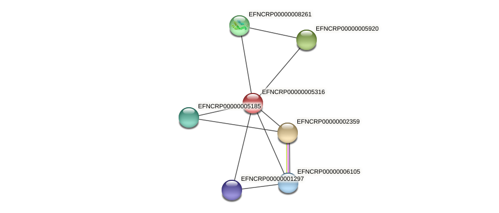 EFNCRP00000005316 protein (Neurospora crassa) - STRING interaction network