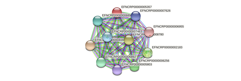 EFNCRP00000005357 protein (Neurospora crassa) - STRING interaction network