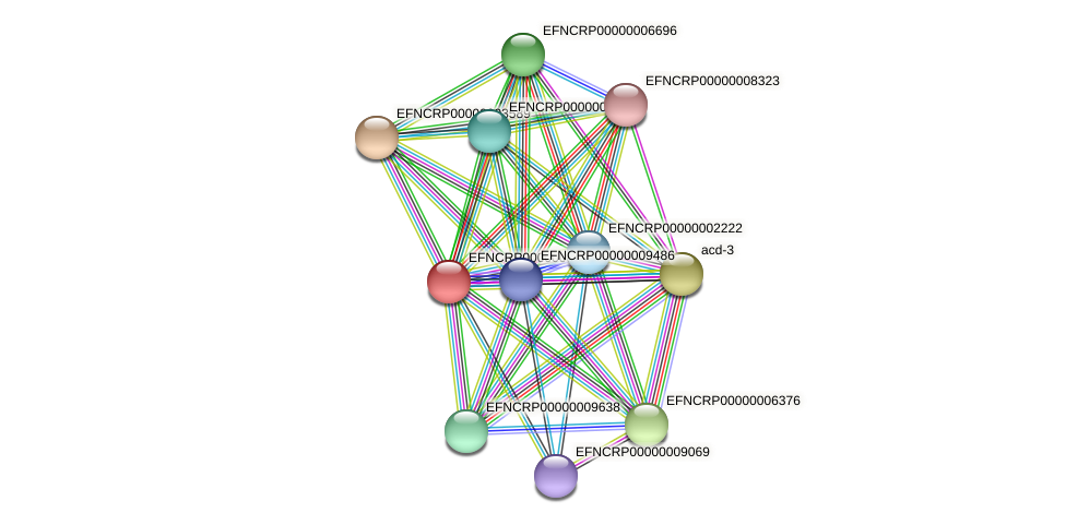 EFNCRP00000005618 protein (Neurospora crassa) - STRING interaction network