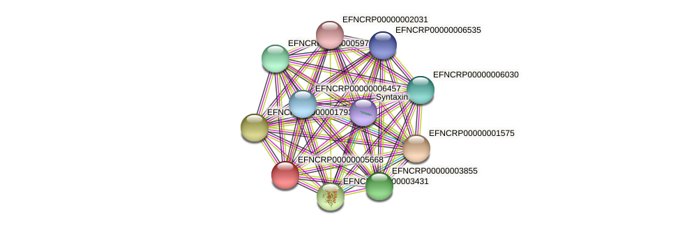 EFNCRP00000005668 protein (Neurospora crassa) - STRING interaction network