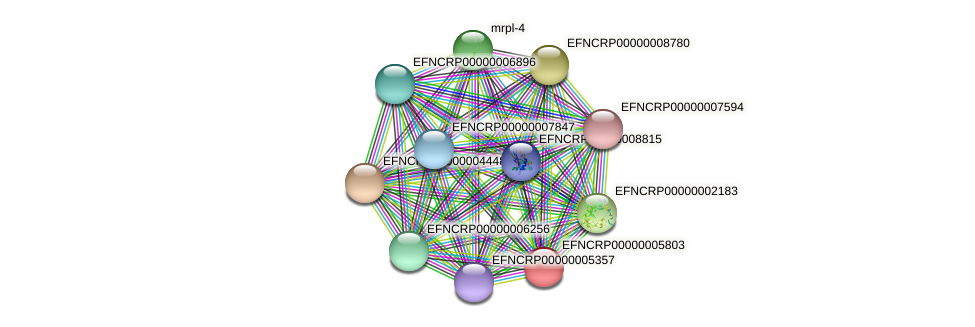EFNCRP00000005803 protein (Neurospora crassa) - STRING interaction network