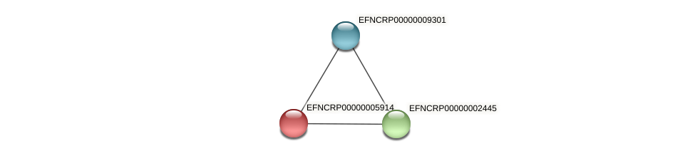 EFNCRP00000005914 protein (Neurospora crassa) - STRING interaction network