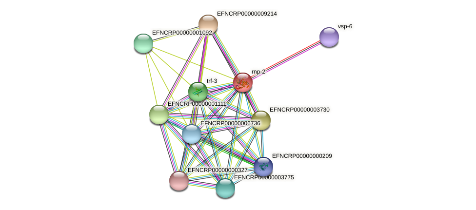 EFNCRP00000005948 protein (Neurospora crassa) - STRING interaction network