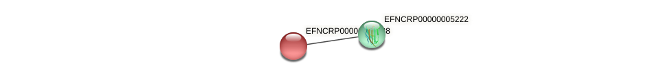 EFNCRP00000006028 protein (Neurospora crassa) - STRING interaction network