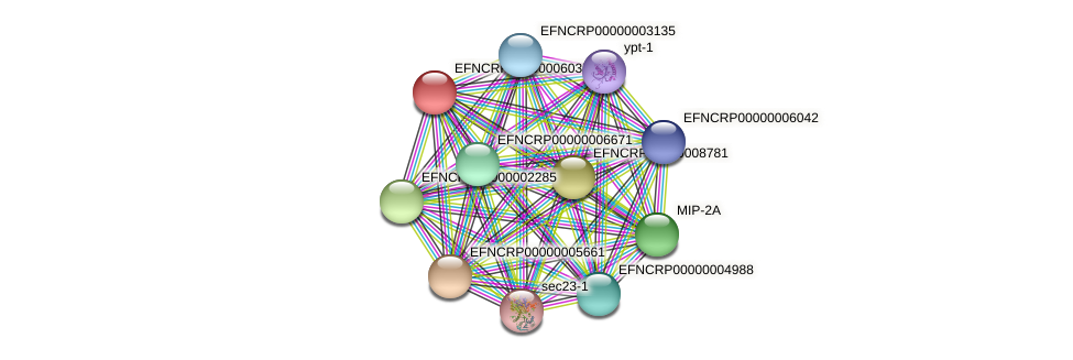 EFNCRP00000006037 protein (Neurospora crassa) - STRING interaction network