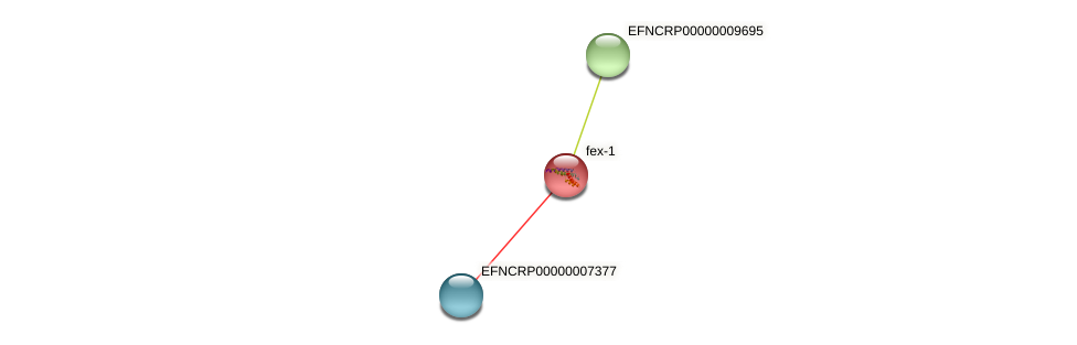 EFNCRP00000006039 protein (Neurospora crassa) - STRING interaction network