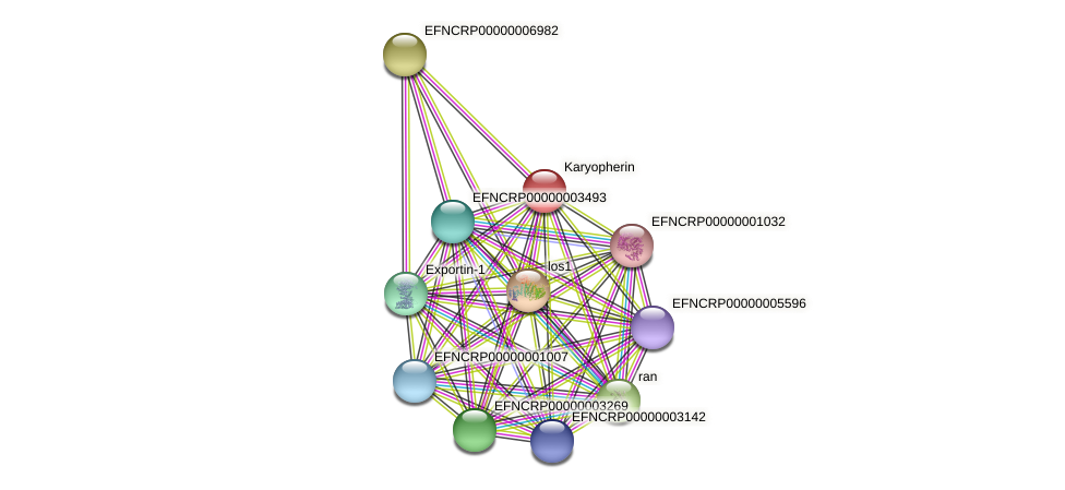 EFNCRP00000006057 protein (Neurospora crassa) - STRING interaction network