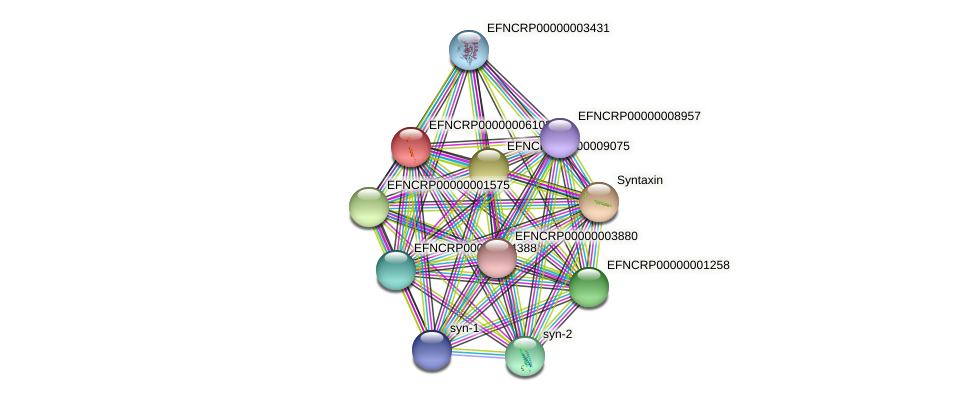 EFNCRP00000006103 protein (Neurospora crassa) - STRING interaction network