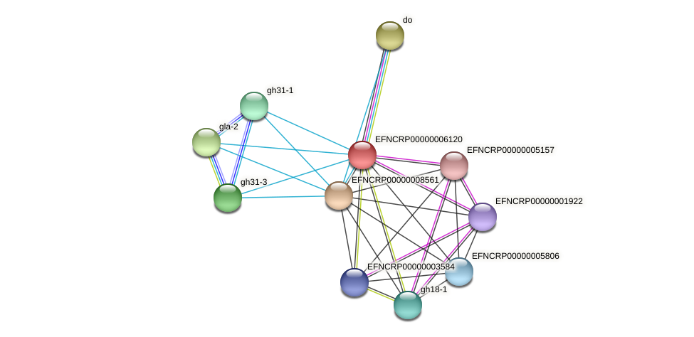 EFNCRP00000006120 protein (Neurospora crassa) - STRING interaction network