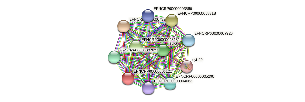 EFNCRP00000006121 protein (Neurospora crassa) - STRING interaction network