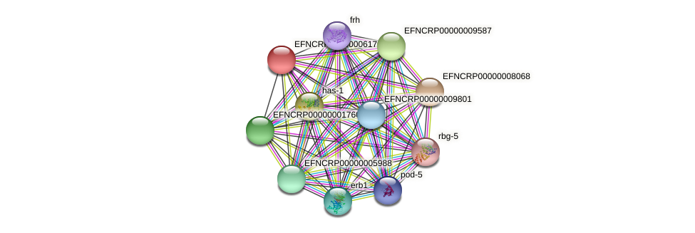 EFNCRP00000006179 protein (Neurospora crassa) - STRING interaction network