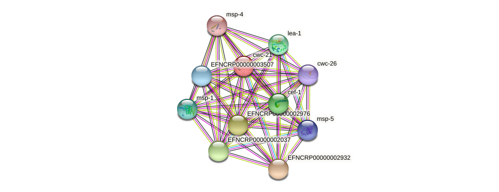 EFNCRP00000006189 protein (Neurospora crassa) - STRING interaction network