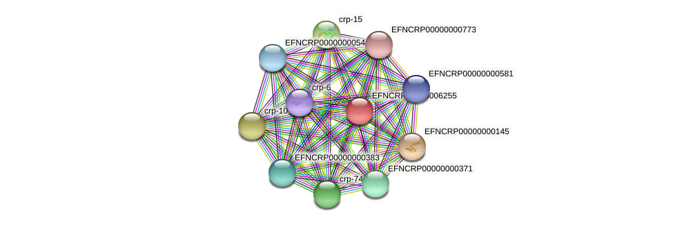 EFNCRP00000006255 protein (Neurospora crassa) - STRING interaction network