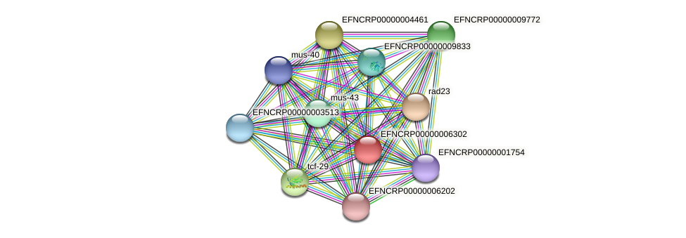 EFNCRP00000006302 protein (Neurospora crassa) - STRING interaction network