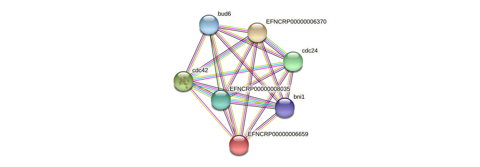 18A7.080 protein (Neurospora crassa) - STRING interaction network
