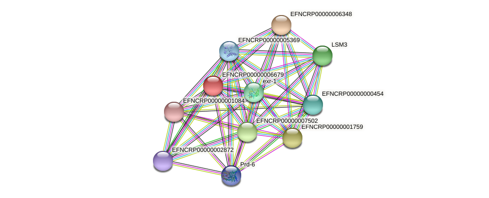EFNCRP00000006679 protein (Neurospora crassa) - STRING interaction network